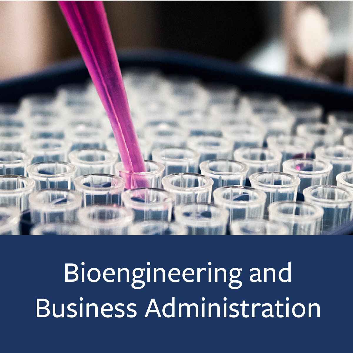 Bioengineering and Business Administration Major Map