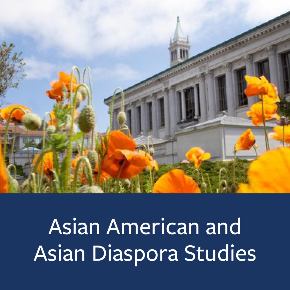 Asian American and Asian Diaspora Studies