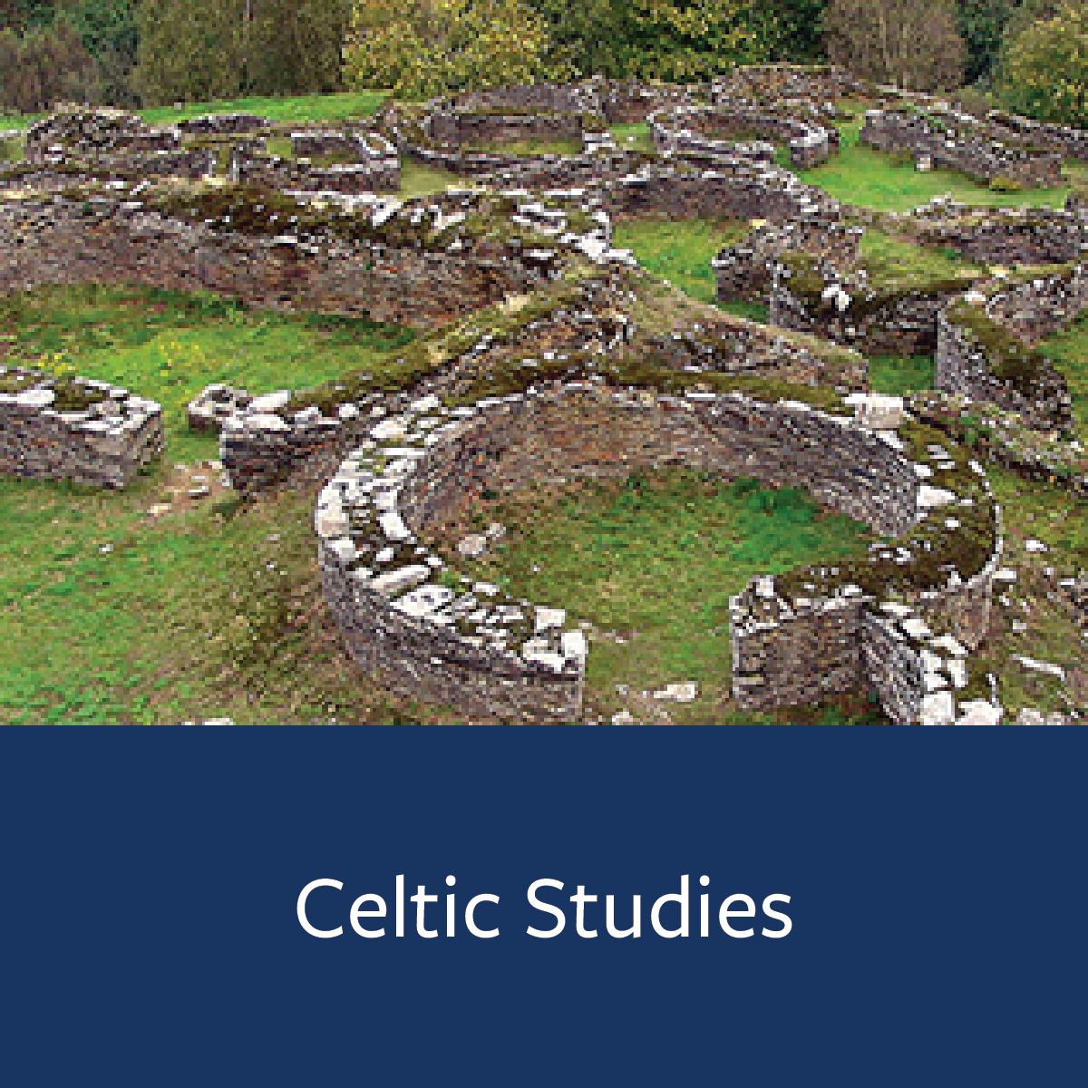 Celtic Studies Major Map