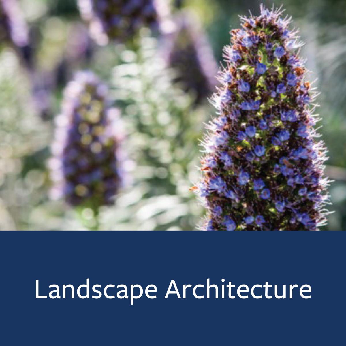 Landscape Architecture Major Map