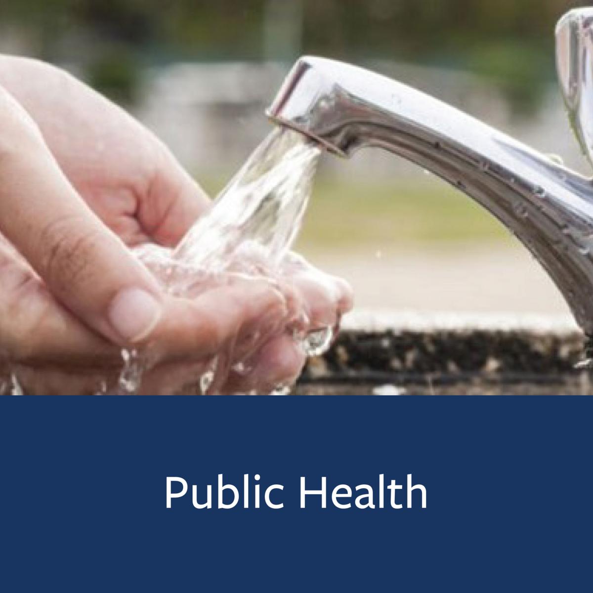Public Health Major Map