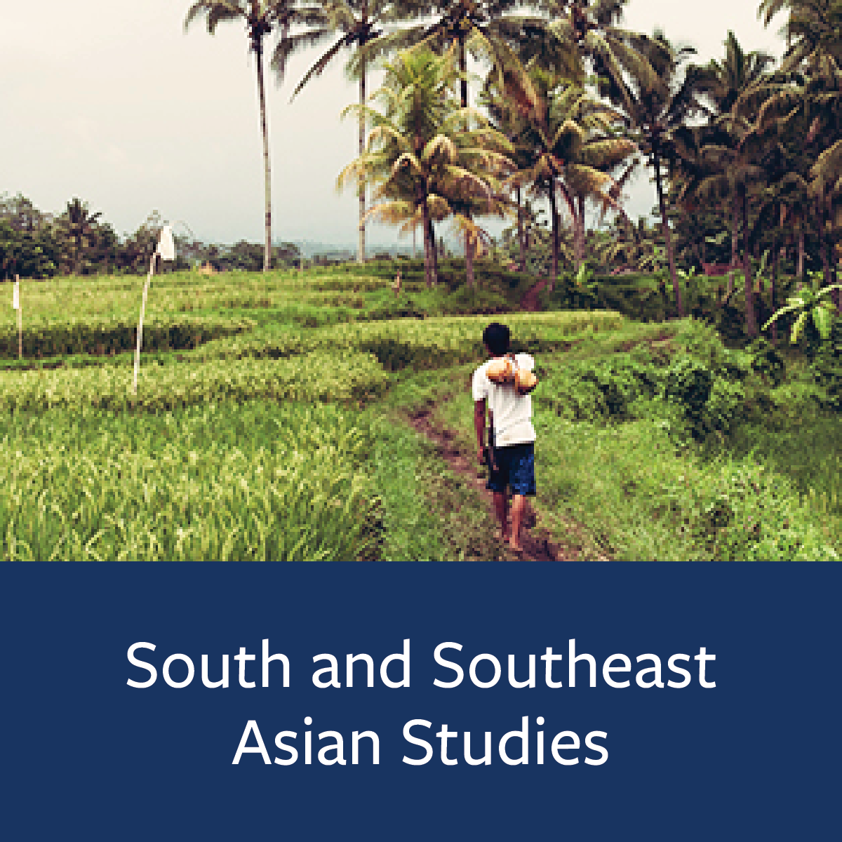 South and Southeast Asian Studies Major Map