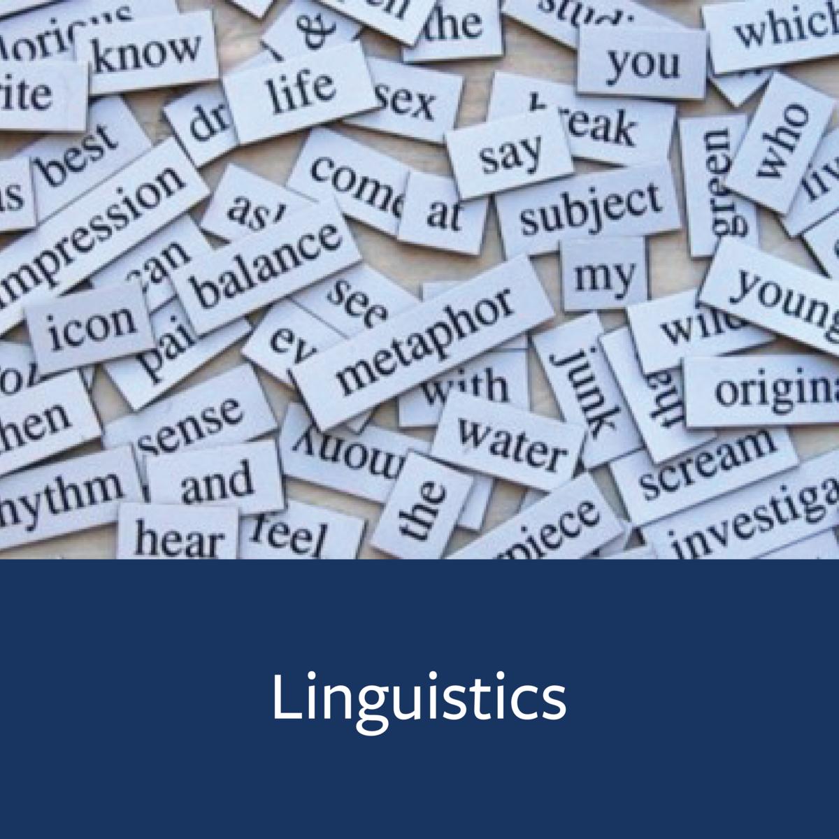 Linguistics Major Map
