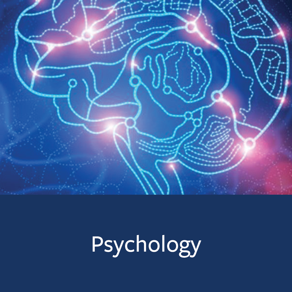 Psychology Major Map